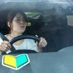 営業 ペーパードライバー